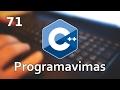 Programavimas C++ 11 #71 - Išvedimas į failą