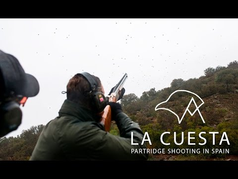 Spectacular Spanish Partridge Shooting at La Cuesta by Jonathan M. McGee