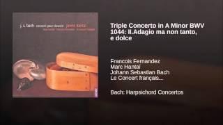 Triple Concerto in A Minor BWV 1044: II.Adagio ma non tanto, e dolce