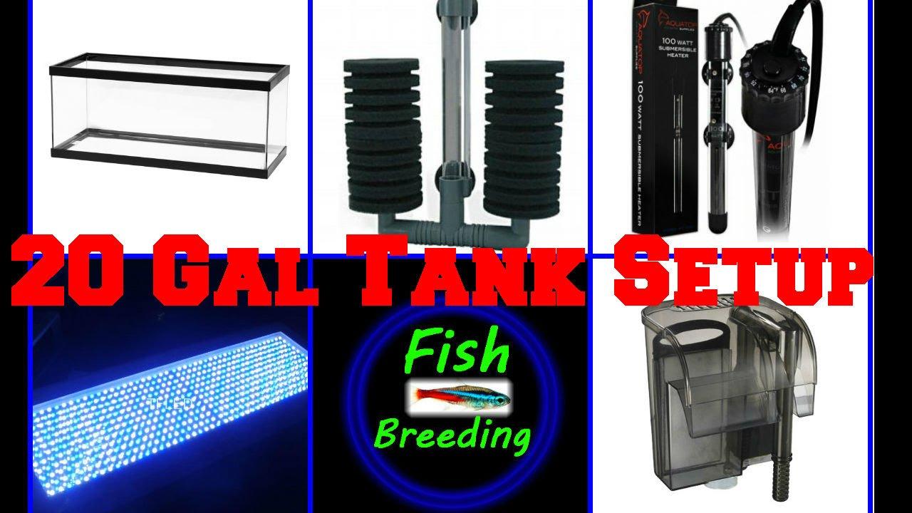 Freshwater aquarium fish breeding - How To Set Up A 20 Gallon Breeding Fish Tank Aquarium Pt 1 Freshwater Tropical Fish Breeders