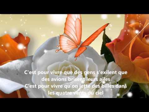 Céline Dion - C'est pour vivre (Lyrics)