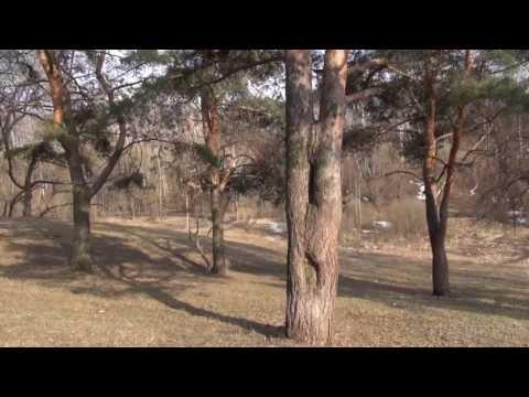 Видео фото материалы продукции компании Промет