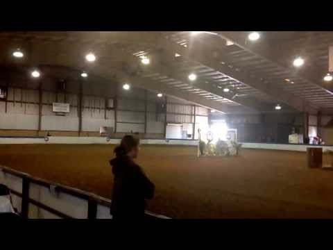Riding snickers at Tampa charity