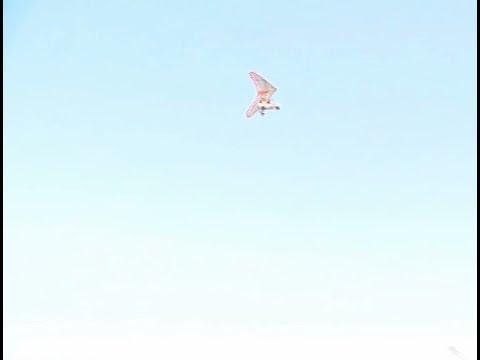 الطيران الشراعي في السعودية روح المغامرة و متعة التحليق  - نشر قبل 1 ساعة