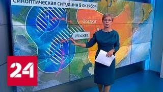 """""""Погода 24"""": в Москве объявлено штормовое предупреждение - Россия 24"""