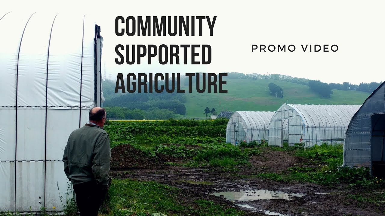 From Farm To Table Documentary Promo Video CSA Philosophy YouTube - Farm to table philosophy