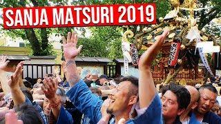 Tokyo's Amazing 三社祭 SANJA MATSURI 2019 at Sensoji Temple in Asakusa