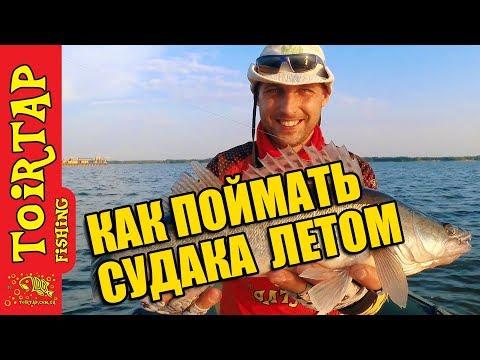 Ловля СУДАКА!!!  | Поиск судака в жару! | Где искать его летом !?