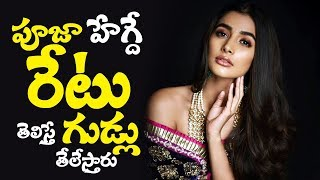 Pooja Hegde Take Huge Remuneration for Upcoming Movies | Akhil Akkineni | #PoojaHegde Valmiki | #TTM