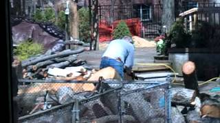 80 Year Old Man Chopping Wood