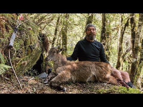 "2017 Film 13  :  "" Tahr and Tears ""  -  Landsborough Valley, Part 1 - Traditional Archery Tahr"