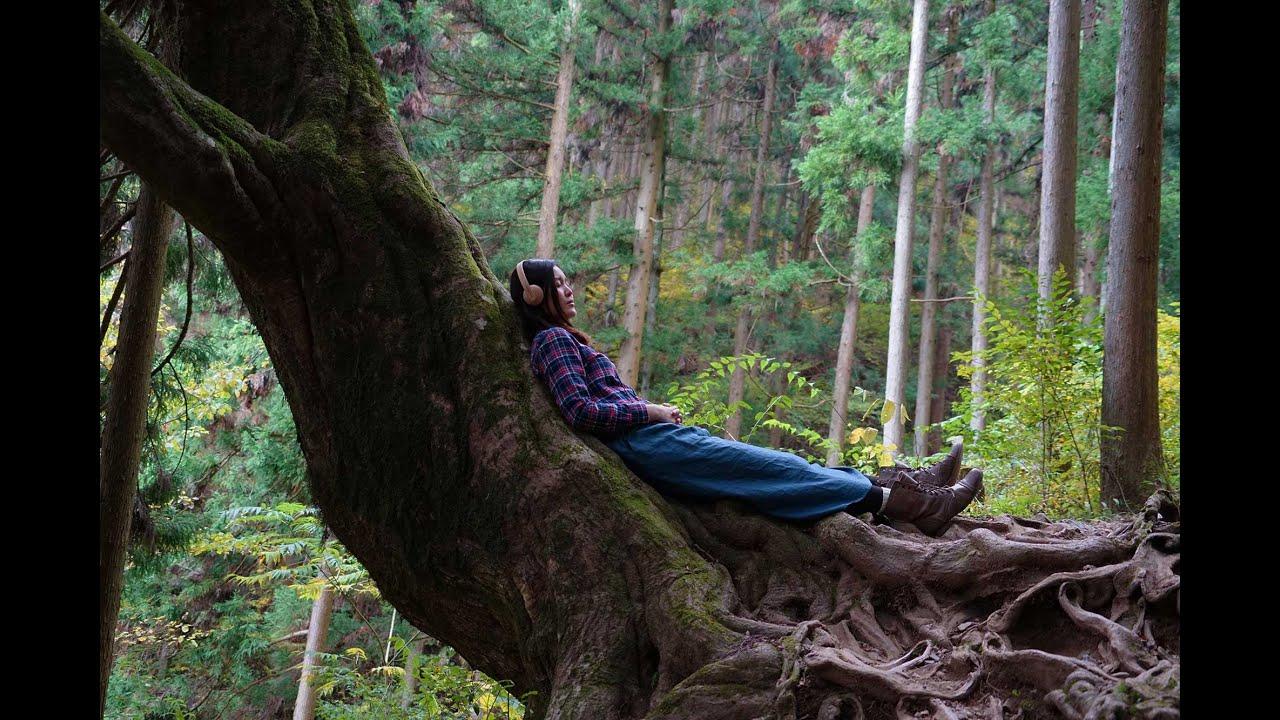 中国産トイレ盗撮 ボディ全体が国産の木でできたヘッドホン「Konohazuk H3」 - ライブドアニュース