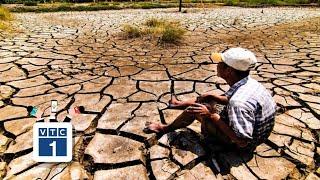 Mỗi năm ĐBSCL mất 17 tỉ USD trong nông nghiệp?