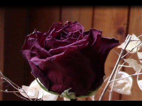 Сухие розы.Розы в сухом букете