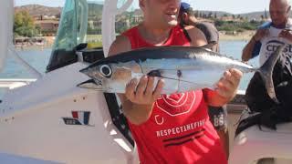 Tuna fishing at Crest Fishing boat.