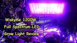 Wakyme Full Spectrum LED Grow Light Review