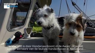 Waddenhaven Vlieland meest hondvriendelijk