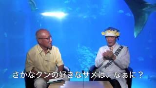 http://www.1101.com/nakaya/index.html 世界のサメ博士、仲谷一宏先生...