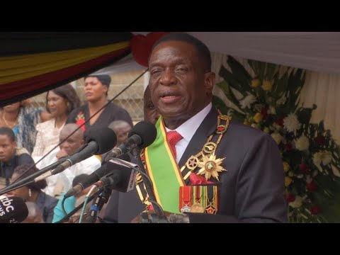 Zimbabwe: Emmerson Mnangagwa pledges to revive failing economy