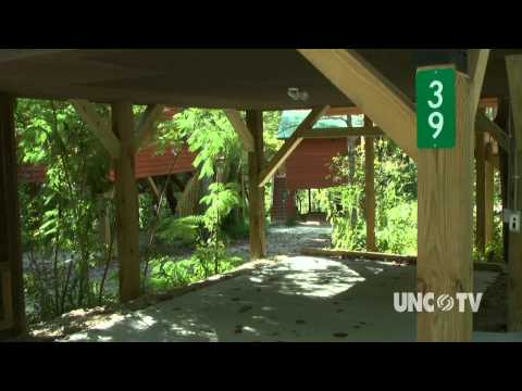 River&39;s Edge Treehouse Resort  NC Weekend  UNC-TV