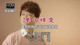 翁立友-夢中情愛【KTV導唱字幕】1080p HD thumbnail
