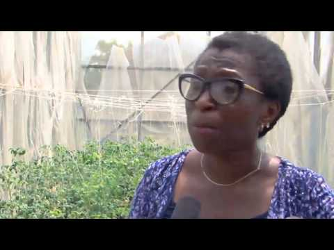 View From The Top Host UK Deputy High Commissioner To Nigeria 'Laure Beaufils' Pt. 3