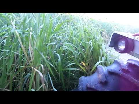 mowing hay 2012