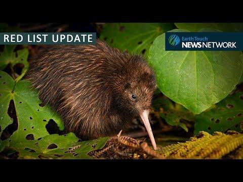 IUCN Red List Update