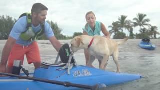 Perception Kayaks   Hi Life Overview