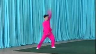 Chang quan Guiding 2 (centre wushu sport) kung fu grenoble