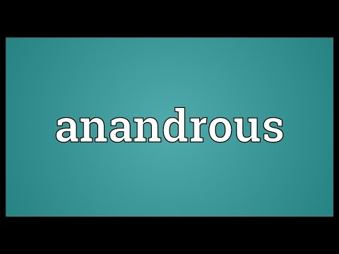 Header of anandrous