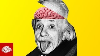 Albert Einsteins Gehirn geklaut und zerhackt?