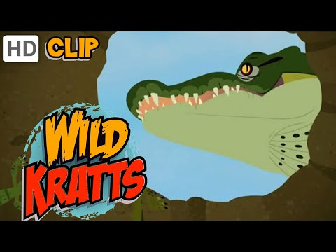 Wild Kratts - The Great Crocodile Hatching