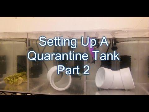 Setting Up A Quarantine Tank & Adding Fish | Beginner Guide To Saltwater Aquariums