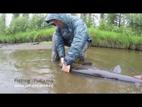 фильмы о рыбалке на реке лена