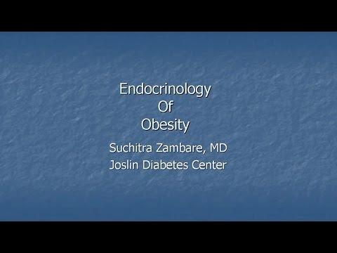Endocrinology of Obesity