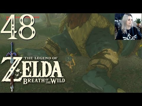 EVENTIDE ISLAND ◅ Let's Play Breath of the Wild #48 ▻ 1080p gameplay
