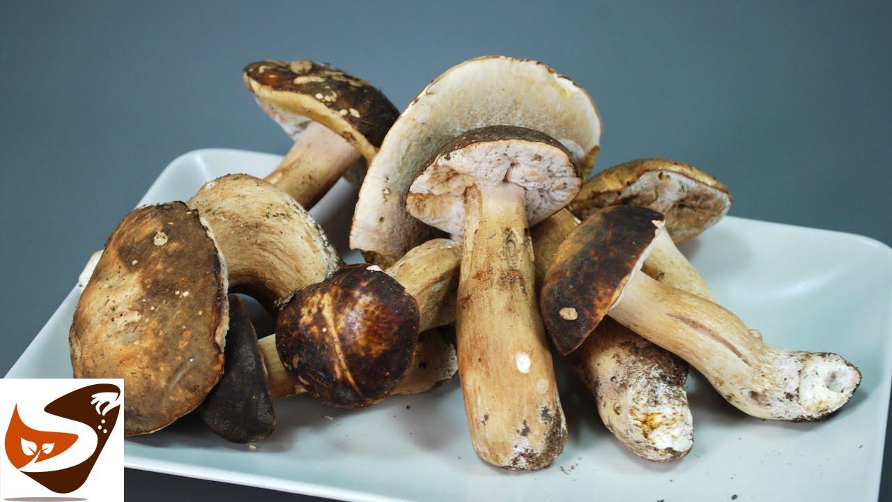 Come Pulire I Funghi Porcini Freschi Secchi Champignon Speziata