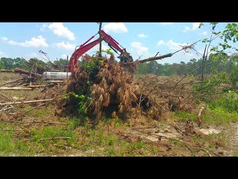 Hill Logging Cleanup 70 Acre