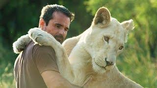 Heartbroken Never Got To Say Goodbye Lion Whisperer Membership