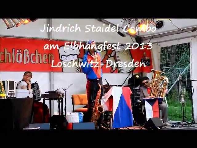 Jindrich Staidel Combo am Elbhangfest 2013 in Loschwitz-Dresden