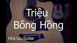 Triệu bông hồng - Guitar Văn Anh - Nam lê