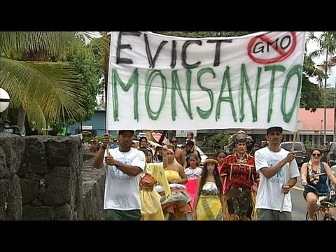 Native Hawaiians lead hundreds in Kona March Against Monsanto