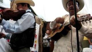 Huapango - Festival de la Huasteca en Xilitla