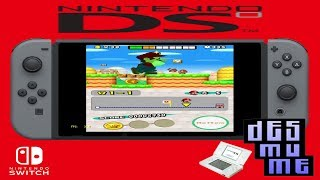 DS via RetroArch on Switch (Homebrew)
