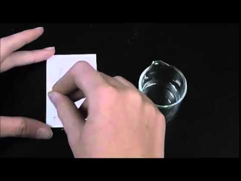 TRU Chemistry labs: How To Prepare and Develop Thin Layer Chromatography (TLC) Plates
