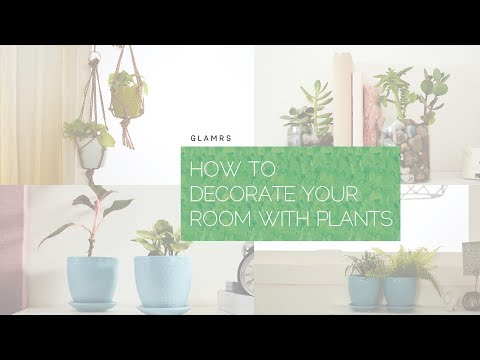5 Health Benefits Of Indoor Plants (EMF Blocking, Air