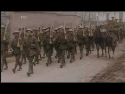 Messines In Colour