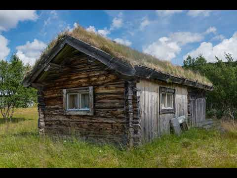 Green roofs | Wikipedia audio article