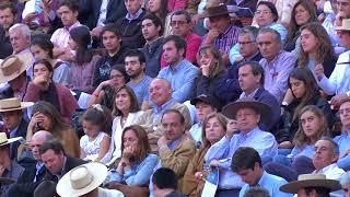RODEO AL DIA 33 CHAMPION 2018 SERIE CAMPEONES